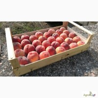Республика Крым.Деревянные ящики из шпона для упаковки фруктов