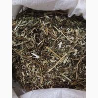 Череда трава (оптом от 5кг)