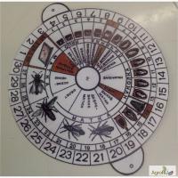 Календарь вывода маток - инвентарь для пасеки