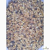 Продаю зерно кукурузы