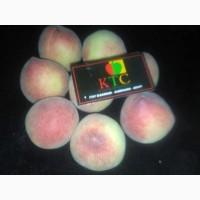Продам свежие персики из Египта