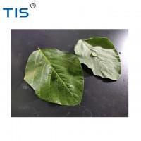 Органосиліконовий сурфактант QS-307 cas no. 27306-78-1