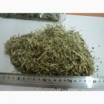 Реализуем лекарственно растительное сырьё