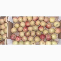 Яблоки Фуджи, сорт 1, калибр 70-75 от 10 тонн в картонном лотке 60х40, вес 13-15кг мытые