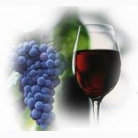 Виноград каберне-совиньон красный