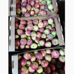 Продам яблоко Женева Эрли урожай 2021г. от производителя