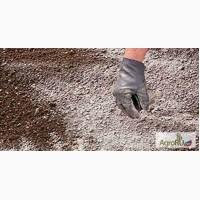 Мелиоранты почв