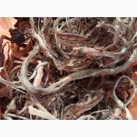 Копеечник чайный (Красный корень) (оптом от 5кг)