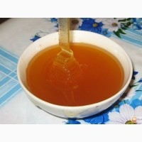 Натуральный мёд оптом из Крыма