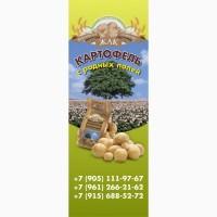 Реализуем и продаем картофель оптом