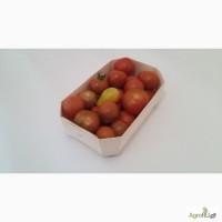 Эко лоток- подложка из шпона для томатов черри