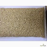 Кедровый орех (ядро). Экспорт кедрового ореха