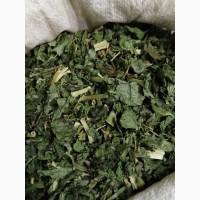 Галега лекарственная Козлятник лист (оптом от 5кг)