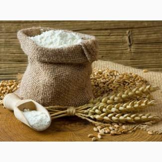 Мука пшеничная хлебопекарная Высший сорт или Первый сорт