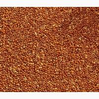 Семена просо (красное)