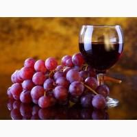 Виноград саперави красный