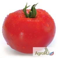 Семена томата ХИТОМАКС F1 (Китано)