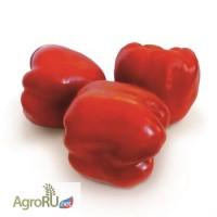 Семена сладкого перца KS 04 F1 фирмы Китано