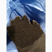 Черный тмин (Нигелла, калинджи, калонги, римский кориандр) семена (оптом от 5кг)