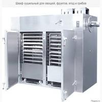Сушильный шкаф -СШ-30 для сушки овощей и фруктов и другого сырья