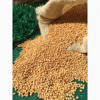 Услуги по очистке семян