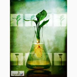 Агрохимия гербициды, инсектициды