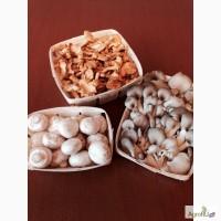 Тара, упаковка для грибов