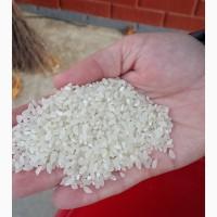 Рис шлифованный круглое зерно