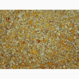 ООО НПП «Зарайские семена» продает фуражную и колотую кукурузу, оптом и в розницу