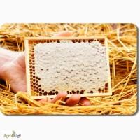Натуральный мёд с личной пасеки оптом и в розницу