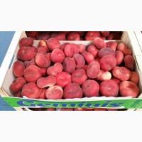 Предлагаем отличную цену за оптовую партию персика Инжир