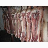 Свинина полутуши 1, 2 и 4 категории в п/т от производителя ГОСТ