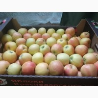 Яблоки оптом и мелким оптом