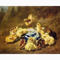 Комбикорм для цыплят с 7 дней жизни ПК 2-2