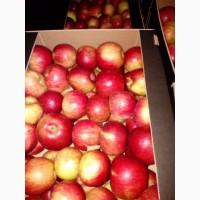 Яблоко в большом объеме