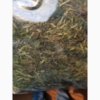 Крапива двудомная (лист) (оптом от 5кг)