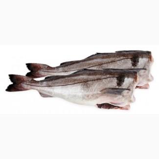 СМ Рыба оптом