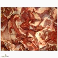 Говядина котлетное мясо 80/20