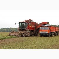 Услуги уборки урожая. Аренда комбайнов