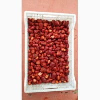Продам Клубника свежемороженая. Импорт от Египетского производителя