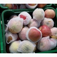 Сетка из вспененного полиэтилена для овощей, фруктов в бухте (рукав 100 пог м)