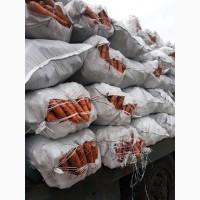 Купим репчатый лук, морковь, картофель