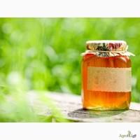 Производим и продаём мёд. Экспорт