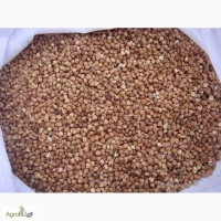 Продам Гречневую крупу ГОСТ от 20т, 12 р/кг