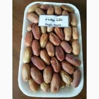 Продам финики из Алжира, сорта: Деглет Нур, Мэш Дегла, Дегла Байда