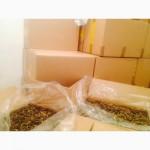 Принимаем заказы на заготовку грибов сморчок сухой.帽状羊肚菌 свежей и соленой