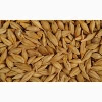 Фуражное зерно в республике Карелия
