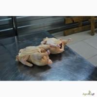 Цыпленок бройлер фермерский