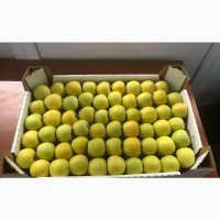 Яблоки оптом, Голден, Гренни Смит и другие сорта
