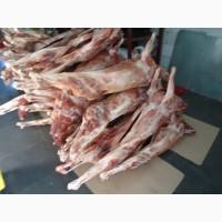 Внимание!!!!!Экологичное, диетическое Мясо дикого оленя. Доставка